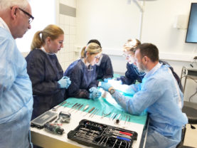 kerimedical cadaverlab chirurgie main pouce hand thumb prothese trapezo metacarpienne tmc cmc