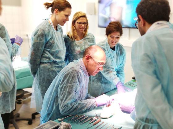 kerimedical training touch prosthesis trapeziometacarpal dual mobility rhizarthrosis